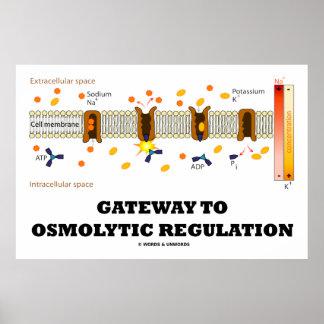 Entrada a la regulación de Osmolytic (transporte a Poster
