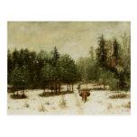 Entrada al bosque en invierno tarjetas postales