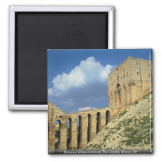 Entrance bridge and moat, The Citadel, Aleppo, Syr 2 Inch Square Magnet