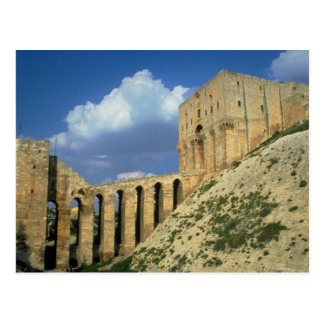 Entrance bridge and moat, The Citadel, Aleppo, Syr Postcard