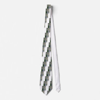 Entrance gate in the fog neck tie