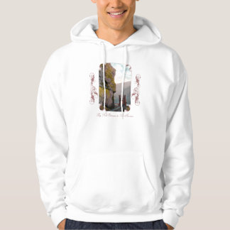 Entrance to The Narrows Hooded Sweatshirt