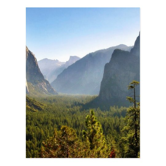 Entrance To The Yosemite Valley Postcard