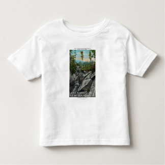 Entrance View of a Ancient Glacial Gorge Toddler T-shirt