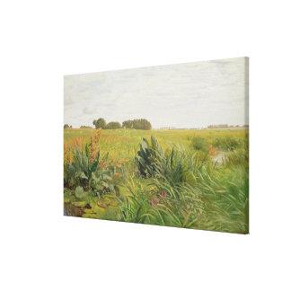 Entre Geest y el pantano, c.1880 Impresiones En Lona