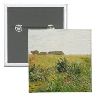 Entre Geest y el pantano, c.1880 Pins
