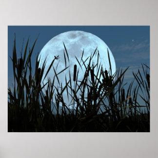 Entre la luna y el poster del pantano
