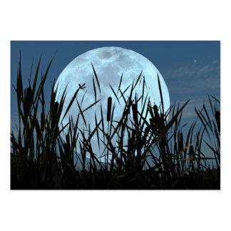 Entre tarjeta de la foto del ATC de la luna y del  Tarjeta De Visita