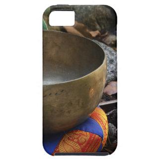 Entrega pacífica iPhone 5 carcasas