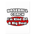 Entrenador de béisbol. Gran cosa Tarjetas Postales