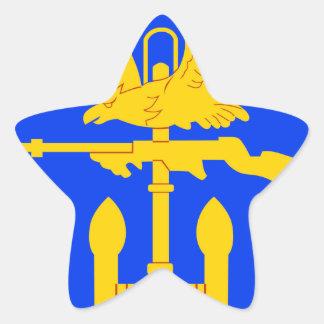 Entrenamiento de Amphibous del ingeniero Pegatina En Forma De Estrella