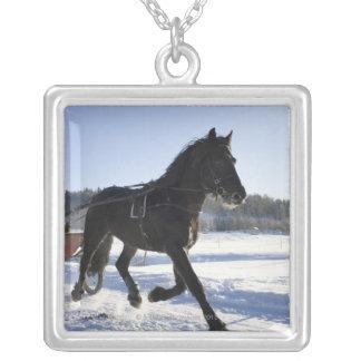 Entrenamiento de caballos en un paisaje hivernal, colgante cuadrado