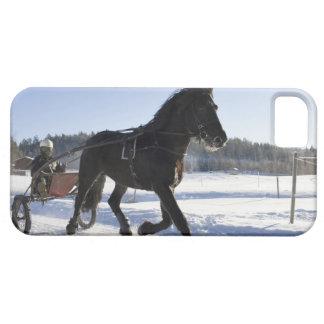 Entrenamiento de caballos en un paisaje hivernal, iPhone 5 Case-Mate coberturas