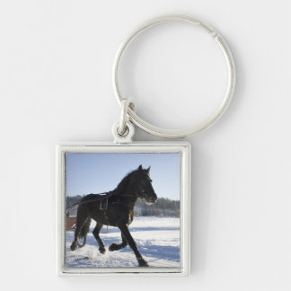 Entrenamiento de caballos en un paisaje hivernal, llavero cuadrado plateado