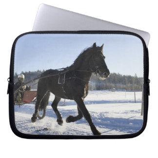 Entrenamiento de caballos en un paisaje hivernal, manga computadora