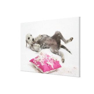 Entrenamiento del comportamiento del perro impresión en lona