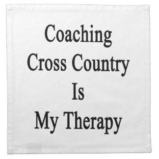Entrenar el campo a través es mi terapia servilletas