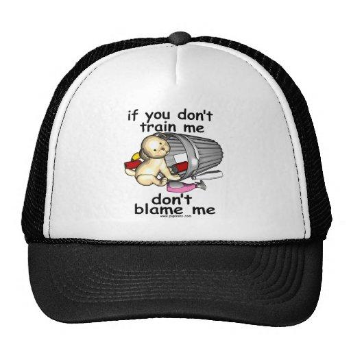 Entréneme perrito gorras