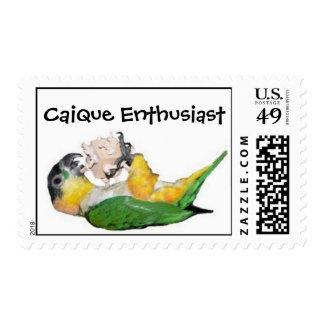 Entusiasta del caique sellos postales