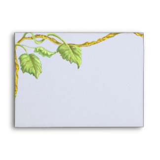 Entwining Vine White Envelope