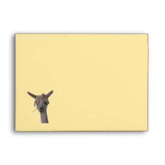 Envelope - GRT Card - alpaca