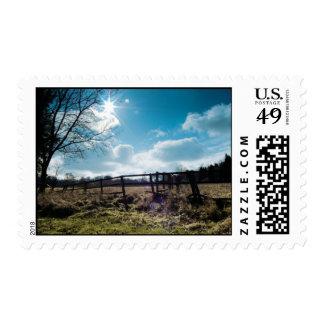 environmental beauty postage