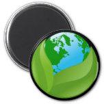 ENVIRONMENTAL EARTH MAGNETS