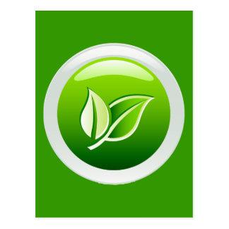 ENVIRONMENTAL GREEN POSTCARD