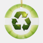 Environmental Issues Ornament