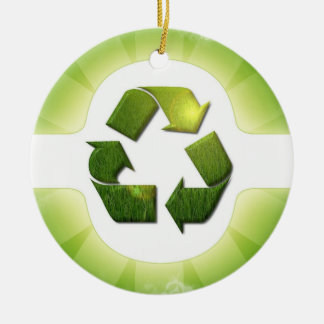 Environmental Issues Ornament