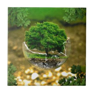 environmental-protection-326923 CAUSA EMPUJE de la Teja Ceramica
