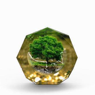 environmental-protection-326923 CAUSES FANTASY DIG Acrylic Award