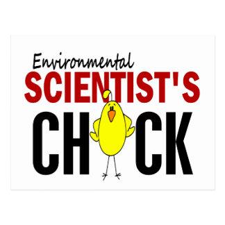 Environmental Scientist's Chick Postcard