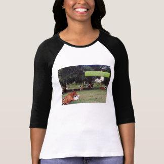 Environmental shirts