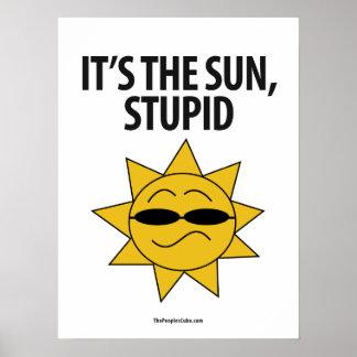Environmentalism - Sun presumido: Poster de la pro