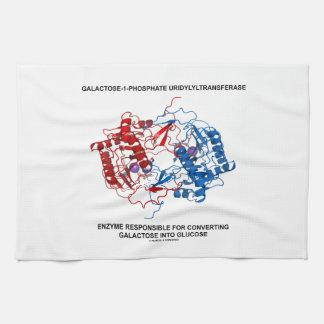 Enzima de Galactose-1-Phosphate Toalla