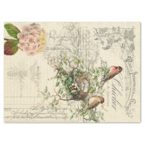 Ephemera Bird Decoupage Tissue Paper
