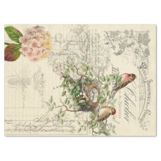 Ephemera Bird Decoupage Tissue Paper
