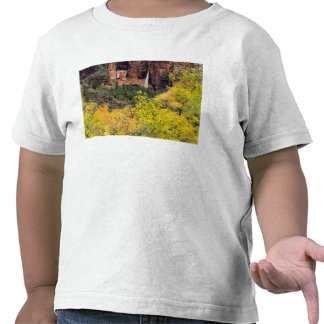 Ephemeral waterfall pours out of slot in cliff shirt
