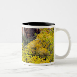 Ephemeral waterfall pours out of slot in cliff Two-Tone coffee mug