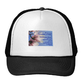 Ephesians 1 mesh hat