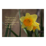 Ephesians 2:8 Biblical Verse with Yellow Daffodil Poster