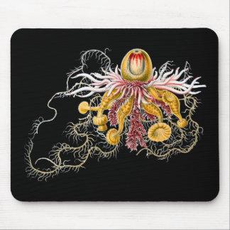 Epibulia Mousepad
