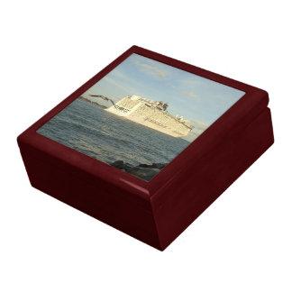 Epic Pursuit - Gull Follows Cruise Ship Gift Box