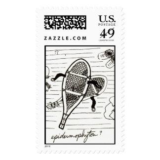 Epidermophyton stamp