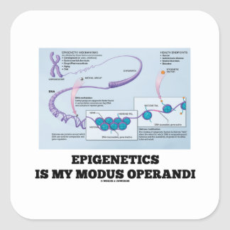 Epigenetics Is My Modus Operandi (Mechanisms) Square Sticker