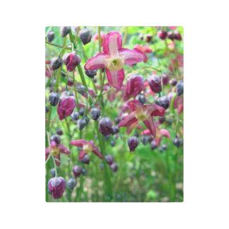Epimedium Flowers and Buds Metal Photo Print