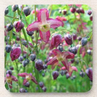Epimedium Flowers Drink Coaster
