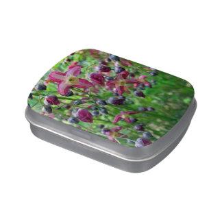 Epimedium Flowers Jelly Belly Tins