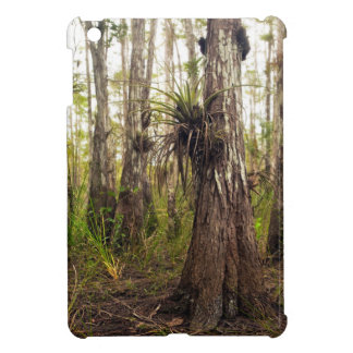 Epiphyte Bromeliad in Florida Forest iPad Mini Cover